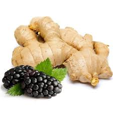 blackberry and ginger on white background